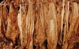 Изготовление табака в домашних условиях