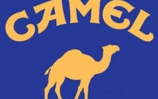 Camel сигареты виды в россии
