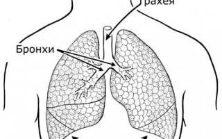 Задыхаюсь от табачного дыма