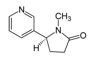 Выведение никотина из организма